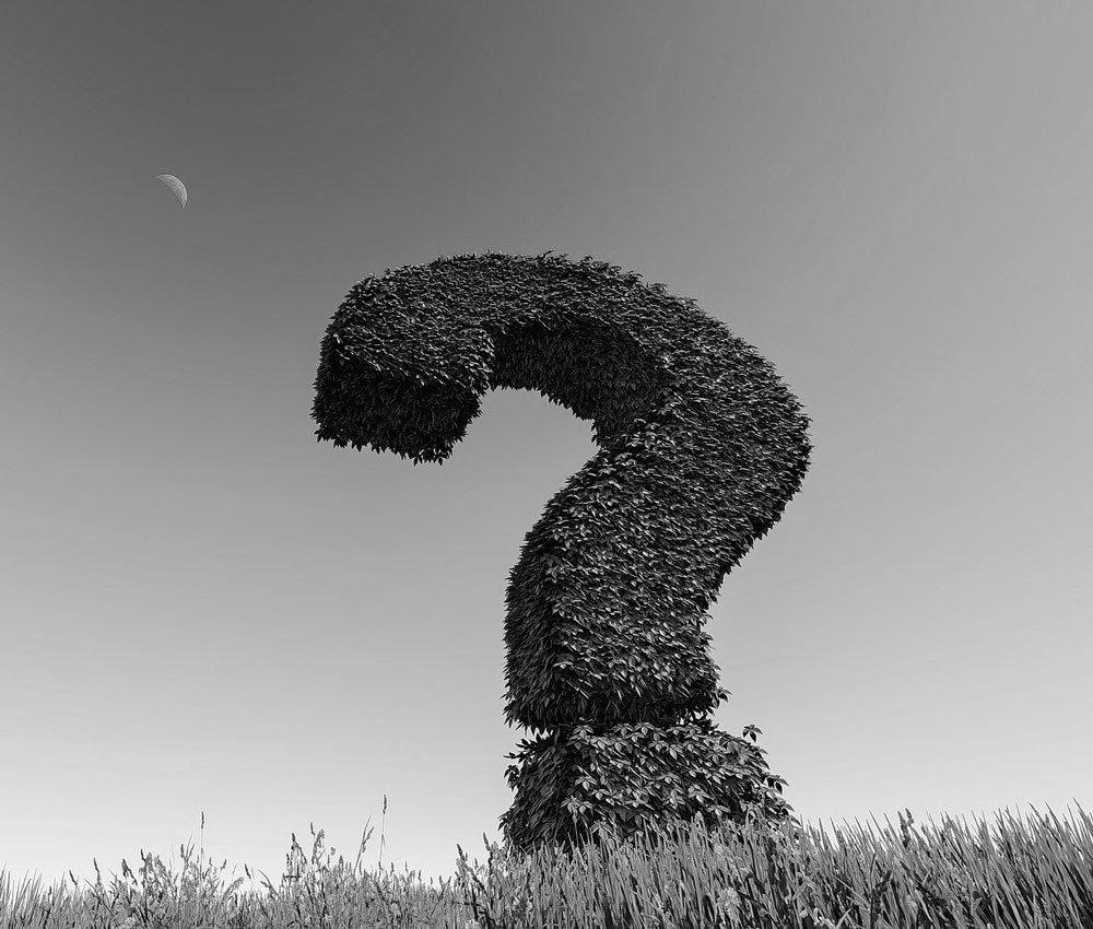 Questionmark in field